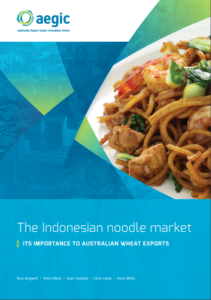 A 15_ Indonesian noodle market research report cover